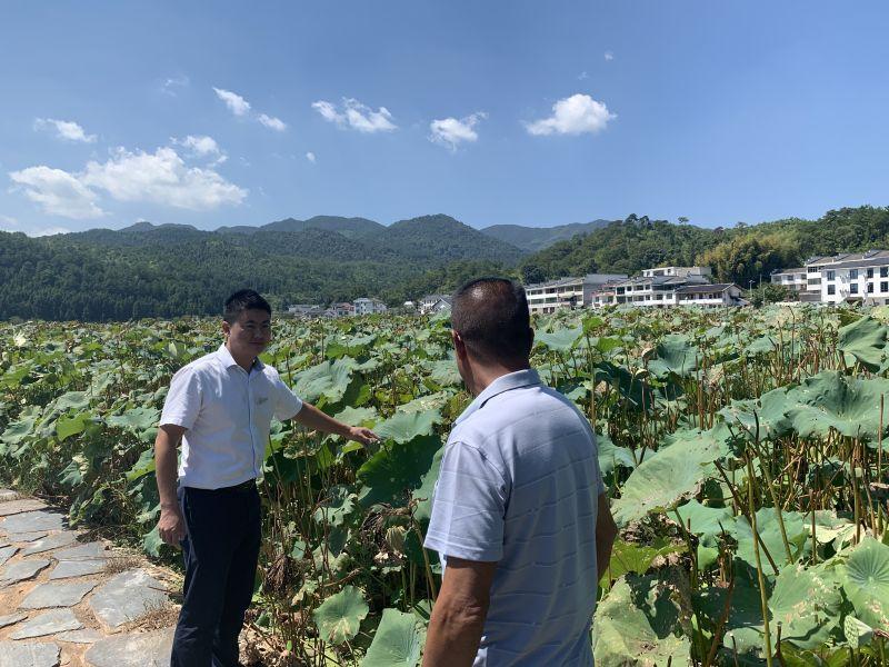 九江银行员工为莲子种植户讲解金融知识