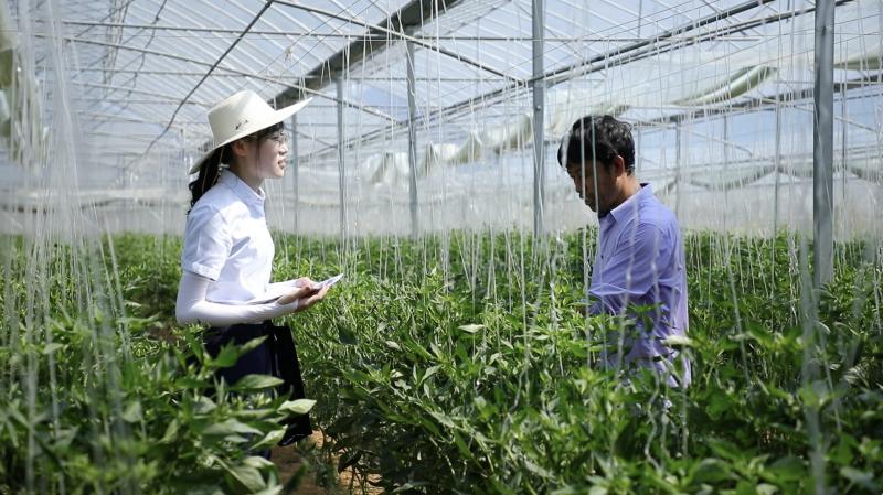 九江银行员工深入赣州蔬菜基地开展上门服务