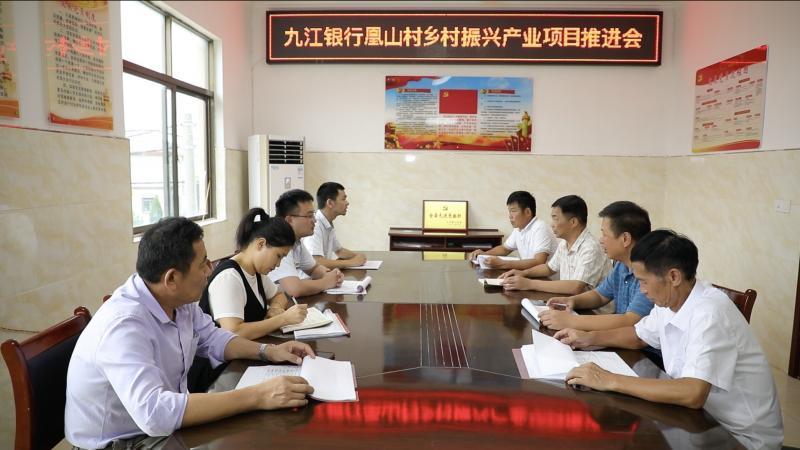九江银行助力凰山村产业振兴