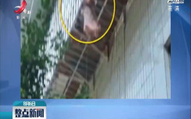 四川遂宁:女童头卡护栏悬空 楼下居民施救
