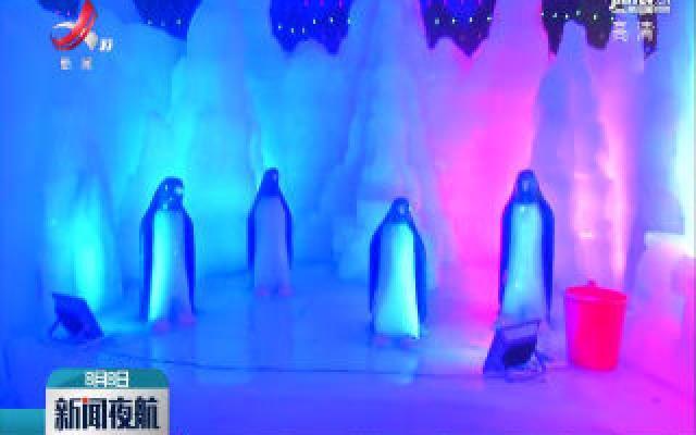 新余首届冰雕节盛夏开幕