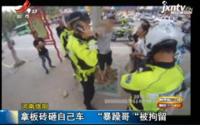 """河南信阳:拿板砖砸自己车 """"暴躁哥""""被拘留"""