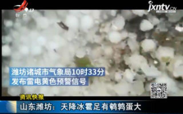 山东潍坊:天降冰雹足有鹌鹑蛋大