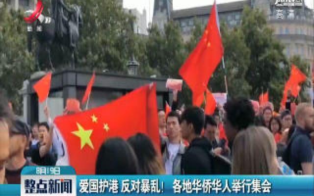 爱国护港 反对暴乱!各地华侨华人举行集会