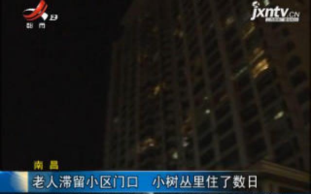 南昌:老人滞留小区门口 小树丛里住了数日
