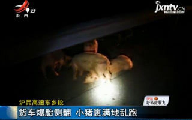 沪昆高速东乡段:货车爆胎侧翻 小猪崽满地乱跑