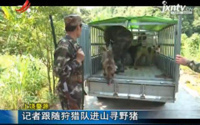 上饶婺源:记者跟随狩猎队进山寻野猪
