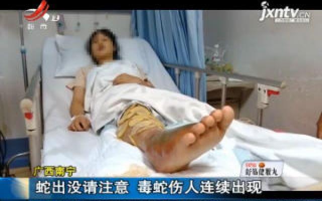 广西南宁:蛇出没请注意 毒蛇伤人连续出现