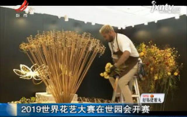北京:2019世界花艺大赛在世园会开赛