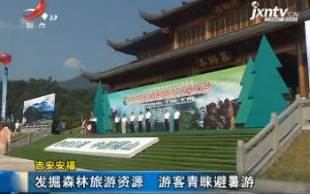 吉安安福:发掘森林旅游资源 游客青睐避暑游
