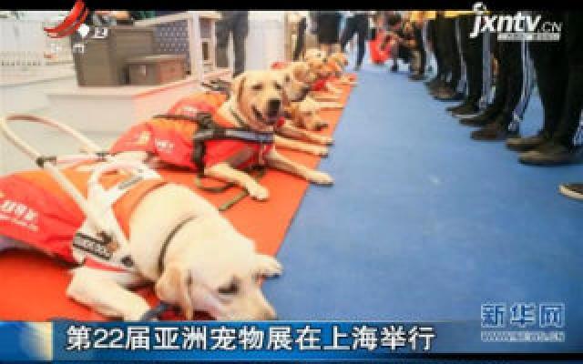 第22届亚洲宠物展在上海举行