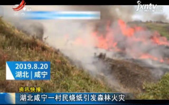 湖北咸宁一村民烧纸引发森林火灾