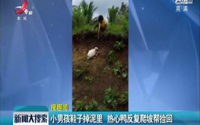 菲律宾:小男孩鞋子掉泥里 热心鸭反复爬坡帮捡回