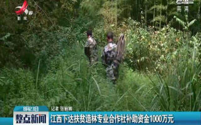 华人娱乐app下载下达扶贫造林专业合作社补助资金1000万元