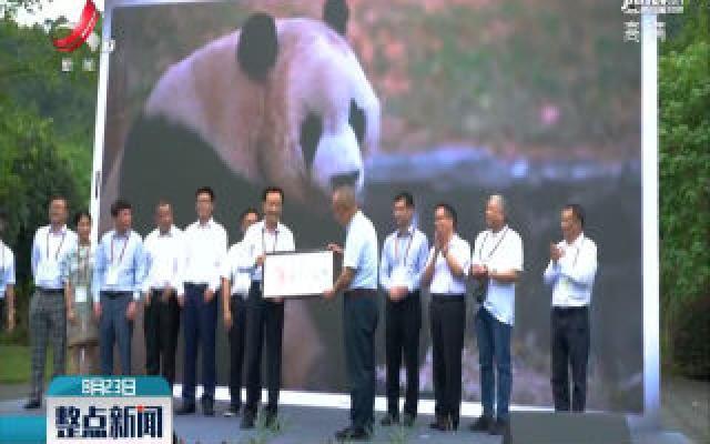 香港青年交流团见证大熊猫命名