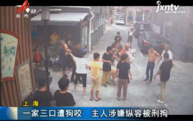 上海:一家三口遭狗咬 主人涉嫌纵容被刑拘