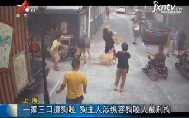 上海:一家三口遭狗咬 狗主人涉纵容狗咬人被刑拘