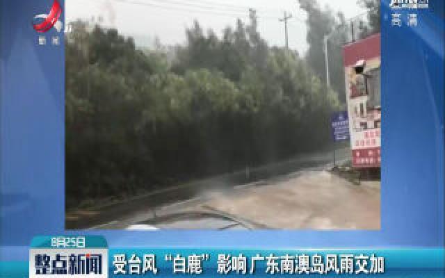 """受台风""""白鹿""""影响 广东南澳岛风雨交加"""
