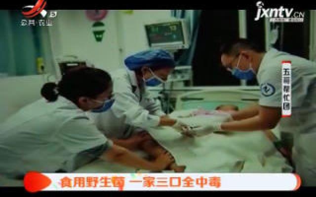贵州:食用野生菌 一家三口全中毒