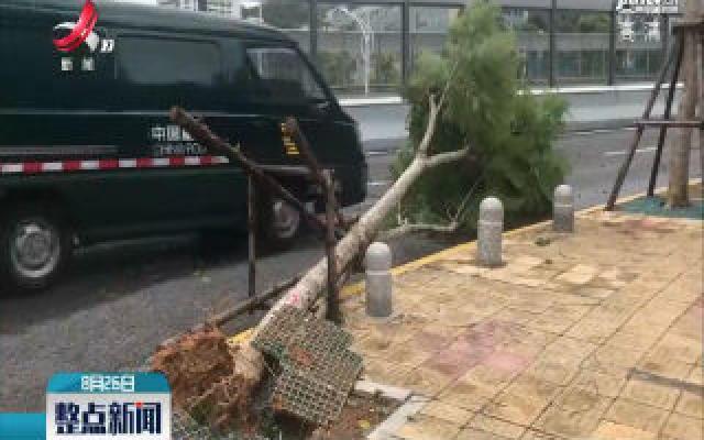 """台风""""白鹿""""减弱 厦门继续发布台风黄色预警信号"""