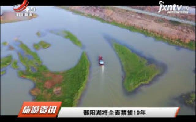 鄱阳湖将全面禁猎10年