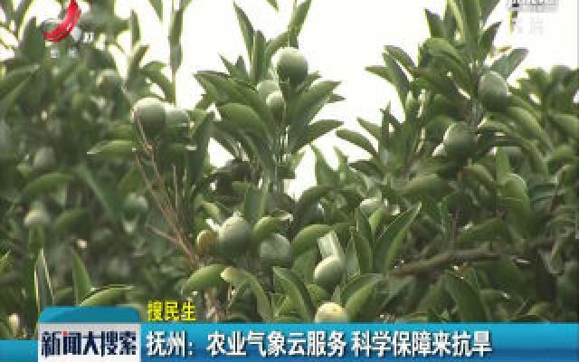 抚州:农业天气云服务 科学保障来抗旱