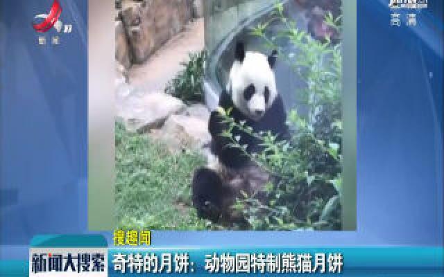 奇特的月饼:动物园特制熊猫月饼