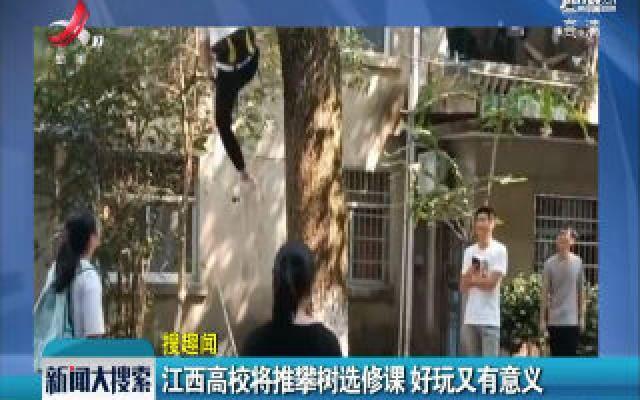 上饶:江西高校将推攀树选修课 好玩又有意义