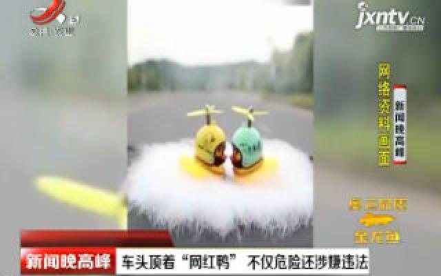 """车头顶着""""网红鸭"""" 不仅危险还涉嫌违法"""