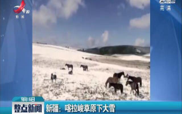 新疆:喀拉峻草原下大雪