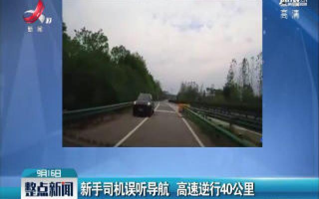 湖北:新手司机误听导航 高速逆行40公里