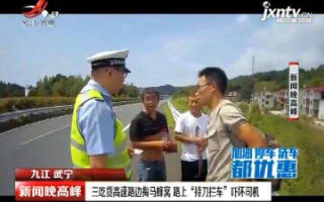 """九江武宁:三吃货高速路边掏马蜂窝 路上""""持刀拦车""""吓坏司机"""