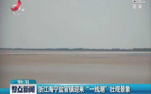 """浙江海宁盐官镇迎来""""一线潮""""壮观景象"""