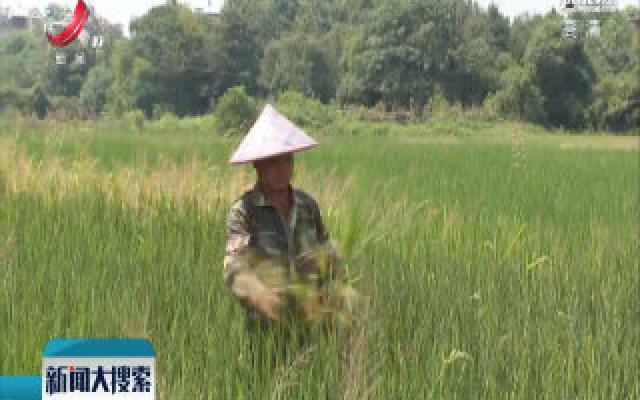 赣北赣中旱情持续发展