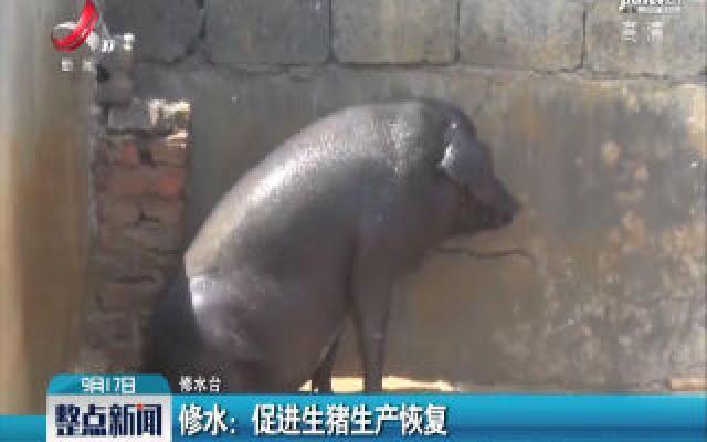 修水:促进生猪生产恢复