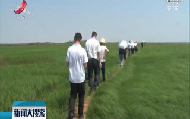 鄱阳湖湿地现江南大草原景观