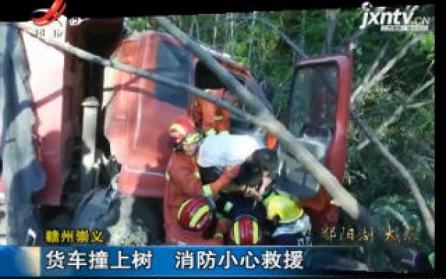 赣州崇义:货车撞上树 消防小心救援
