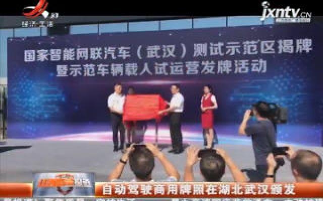 自动驾驶商用牌照在湖北武汉颁发