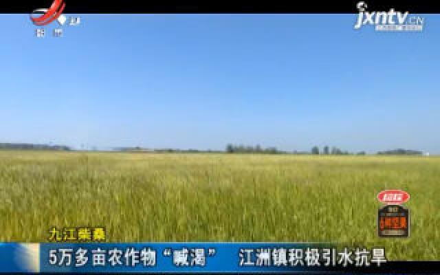 """九江柴桑:5万多亩农作物""""喊渴"""" 江洲镇积极引水抗旱"""