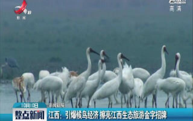 江西:引爆候鸟经济 擦亮江西生态旅游金字招牌