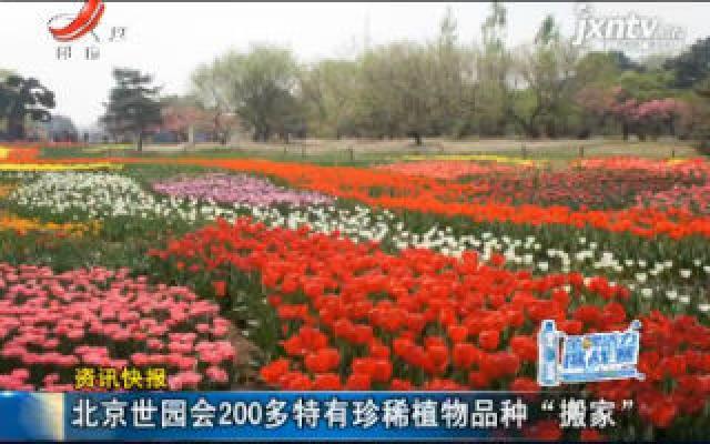 """北京世园会200多特有珍稀植物品种""""搬家"""""""
