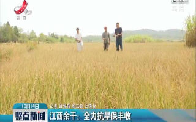 江西余干:全力抗旱保丰收