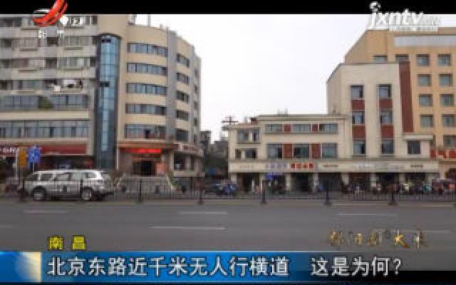 南昌:北京东路近千米无人行横道 这是为何?