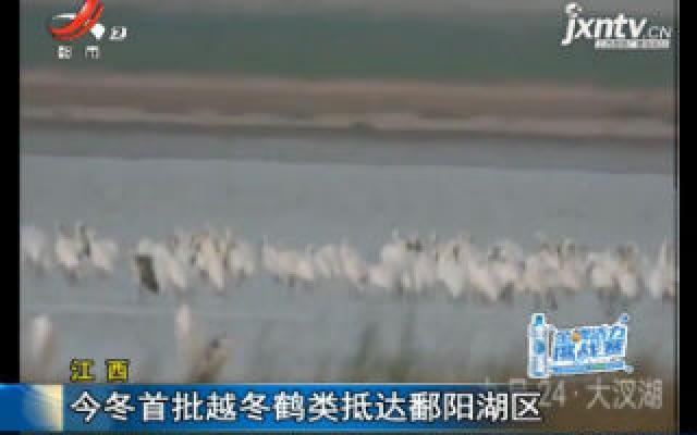 江西:2019年冬首批越冬鹤类抵达鄱阳湖区