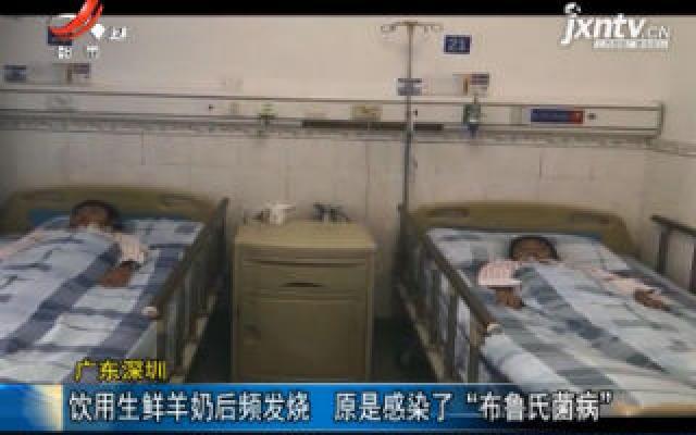 """广东深圳:饮用生鲜羊奶后频发烧 原是感染了""""布鲁氏菌病"""""""