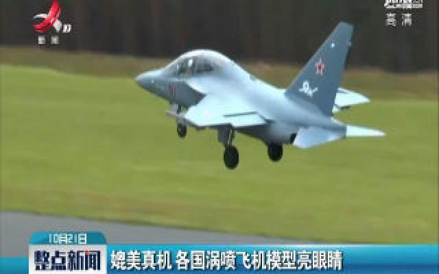山东:媲美真机 各国涡喷飞机模型亮眼睛