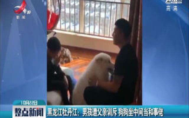 黑龙江牡丹江:男孩遭父亲训斥 狗狗坐中间当和事佬