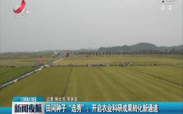 """田间种子""""选秀"""":开启农业科研成果转化新通道"""