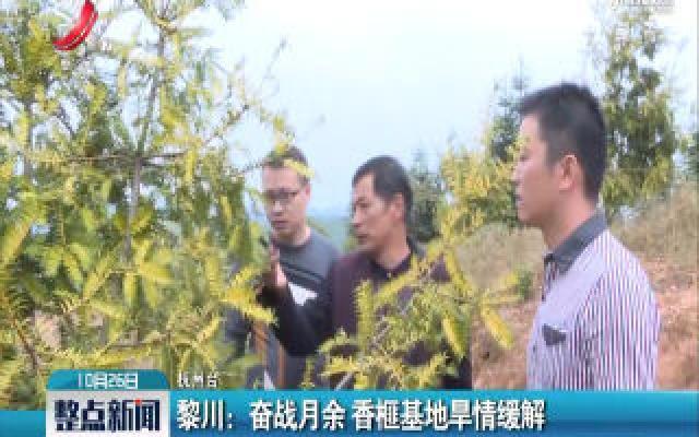 黎川:奋战月余 香榧基地旱情缓解