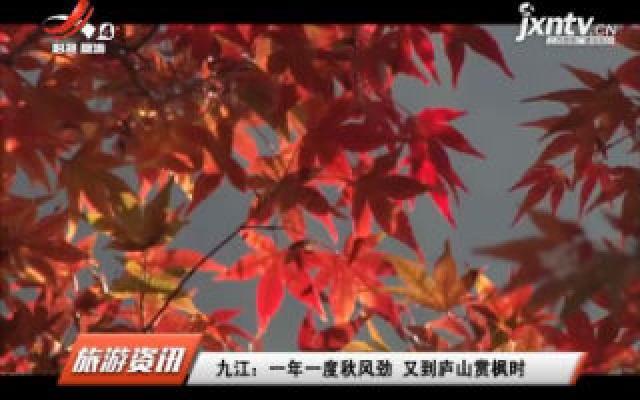 九江:一年一度秋风劲 又到庐山赏枫时